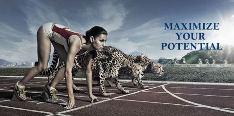 maximize-your-potential